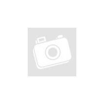 Amica FK2965.3RAA piros hűtőszekrény